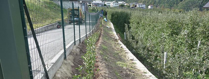 Servizi per esterni: gestione area verde